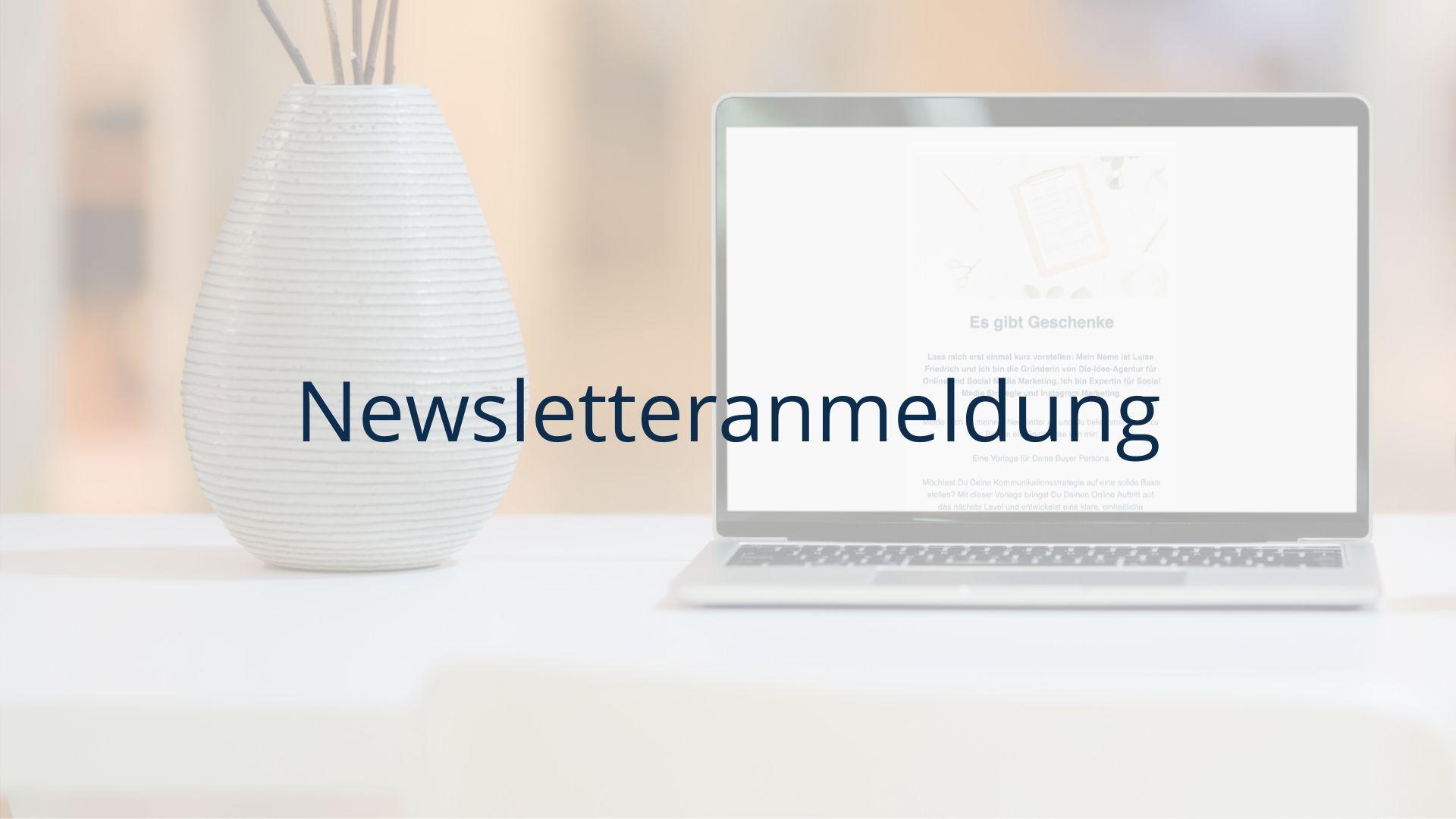 Die Idee Agentur Newsletteranmeldung